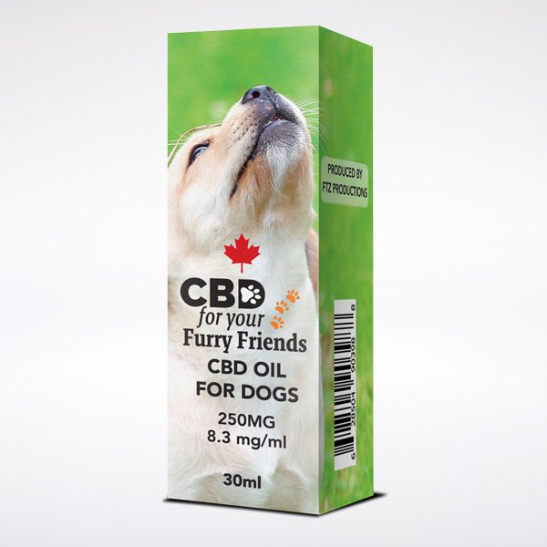 CBD Hemp Oil Pets Dog